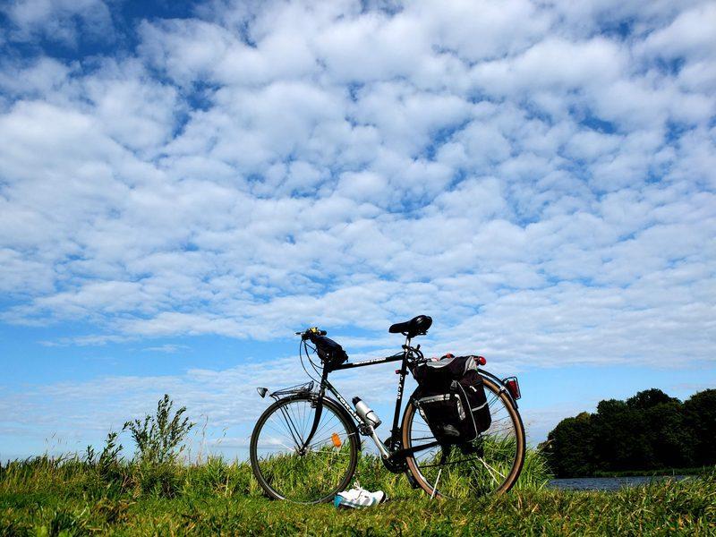 rower-blog_result