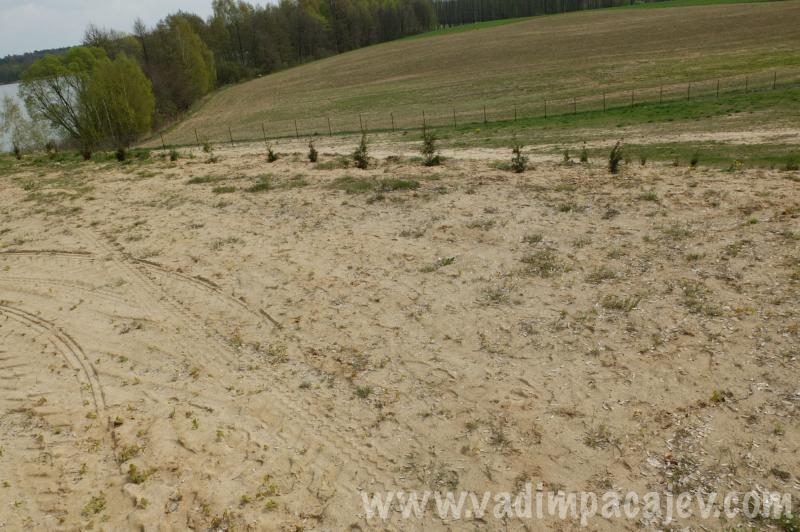 lubcza pole namiotowe_03