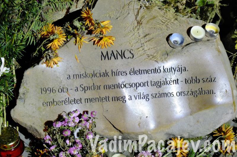 mancs-miskolc-DSCF4154