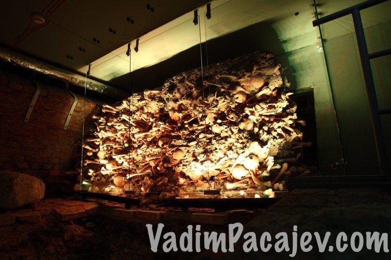 700 letnie Piwnice Romanskie w Gdansku