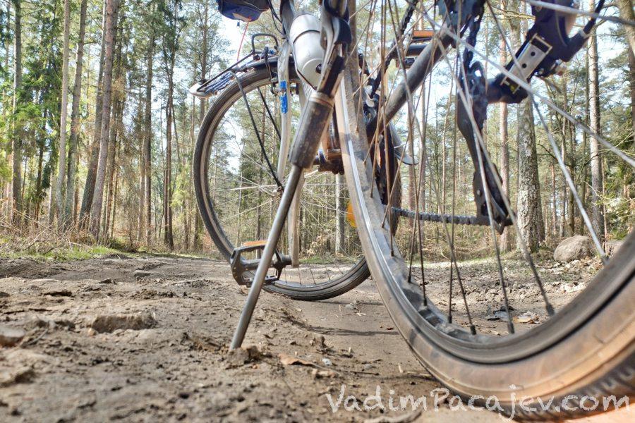 rower-S0180025