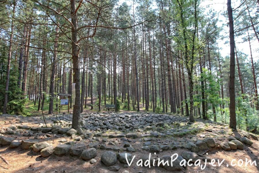 fot. Vadim Pacajev / vadimpacajev.com