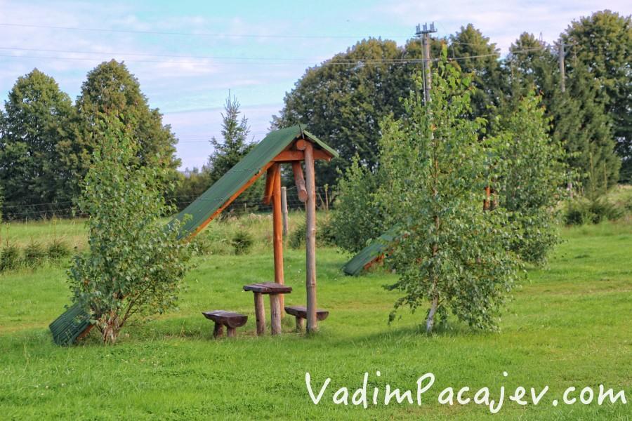 smoldzinski-las-img_9869-copy