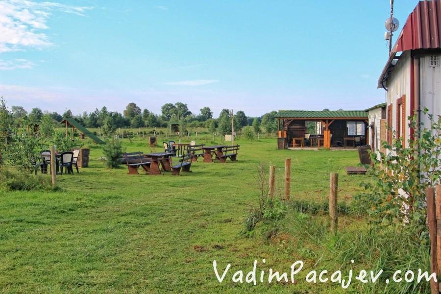 smoldzinski-las-img_9904-copy