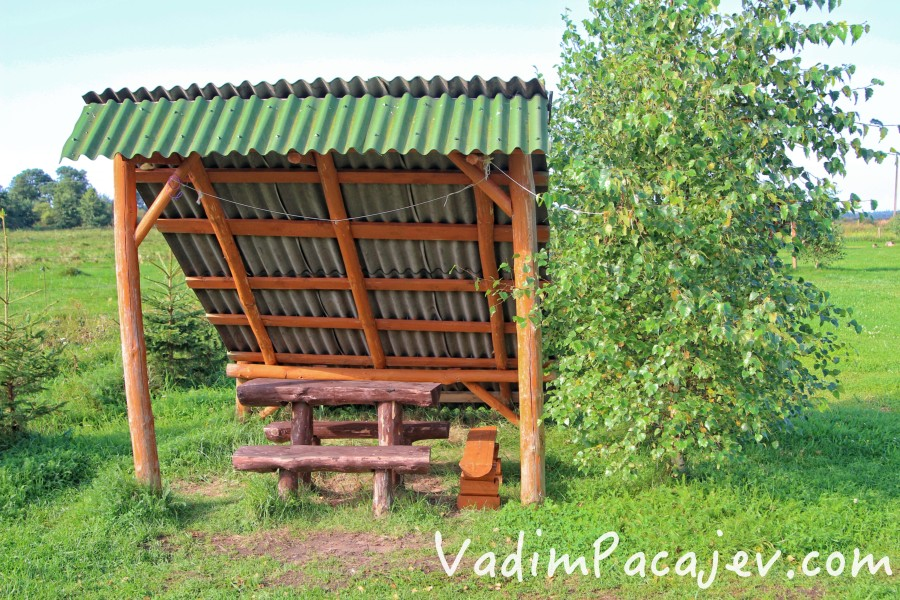 smoldzinski-las-img_9926-copy